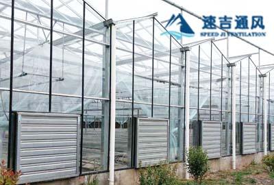 徐州蔬菜大棚种植专用镀锌板负压风机通风降温工程