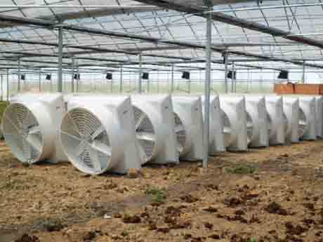仓库小型负压风机,仓库的负压风机选择要点